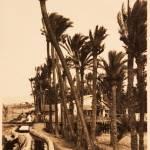 La acequia Mayor regaba la Horta Major o dels Cristians, que se reservaron, tras la conquista, las mejores tierras del término. Fotografía: AHME.