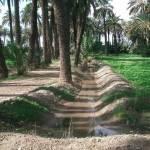 En los márgenes de las parcelas también se disponen los brazales de riego, abiertos simplemente mediante excavación en la tierra.