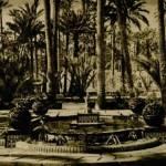 """En 1943, se declara """"Jardín artístico"""" el palmeral de Elche. Unos años más tarde, en 1946, se inauguraría el Parque Municipal, el primer jardín público de la ciudad."""