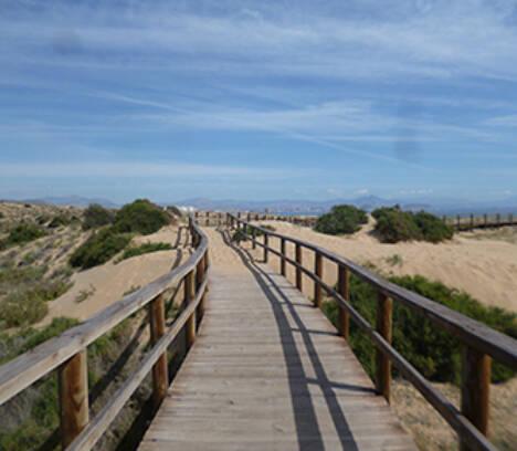 17 de juny – Dia Mundial de Lluita Contra la Desertització i la Sequera