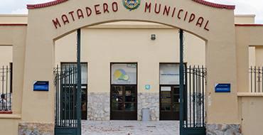El Ayuntamiento recibe del IVAJ cerca de 12.000 euros para desarrollar programas de Juventud