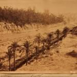 La acequia de Marchena toma dos partes de las doce en las que se dividió el caudal del río, para regar, a la derecha del cauce, fuera del núcleo del regadío, la Horta dels Moros. Fotografía: AHME.
