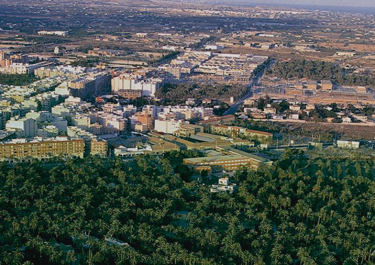 L'Ajuntament incrementa un 33% els pressupostos per a la lluita contra el morrut roig, la protecció dels espais naturals, la promoció del Camp d'Elx i la creació i millora de zones verdes