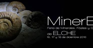 MinerElx. Feria de minerales, fósiles y gemas