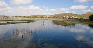 Actividades en el Clot de Galvany para celebrar el Día de la Educación Ambiental