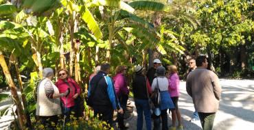 Salida del taller de jardinería en el parque municipal