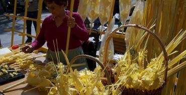 Mercados de palma blanca en Elche