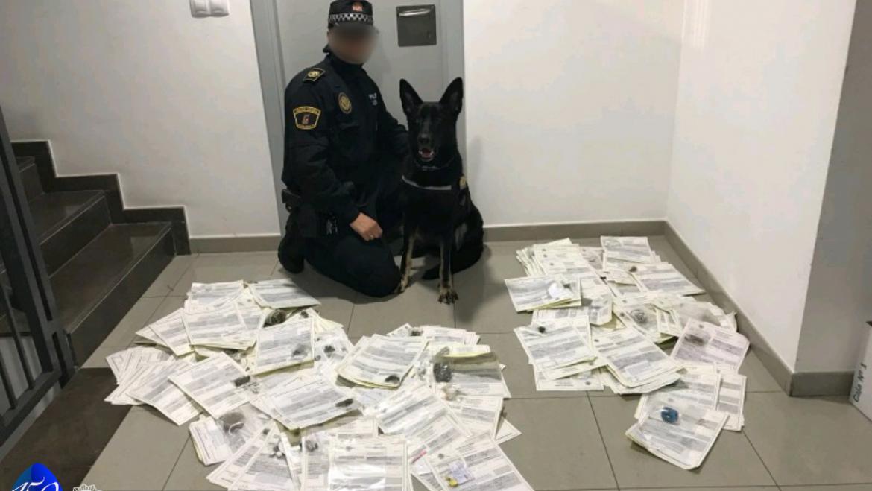 Excelente balance de la Unidad Canina en su colaboración con Policía Local de Cheste
