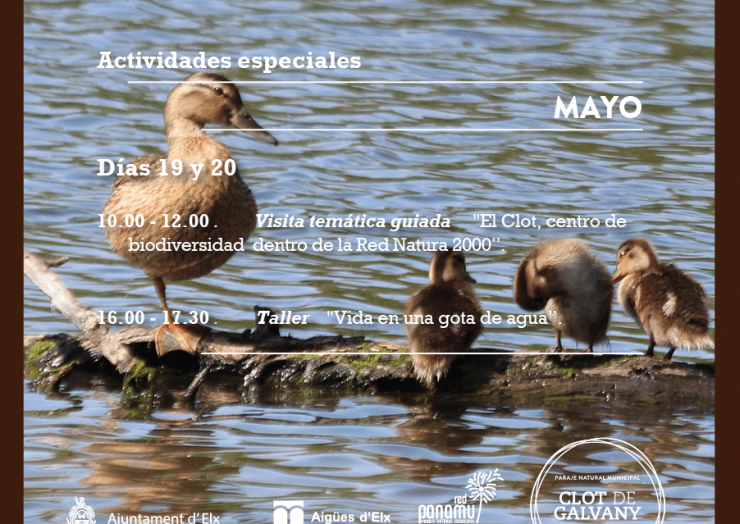 Dia Europeu Xarxa Natura i Dia Mundial de la Diversitat Biólogica
