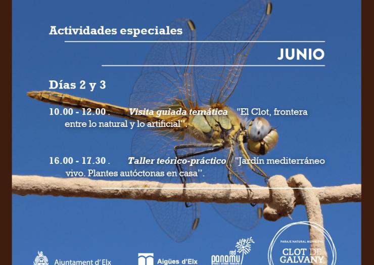 Dia Mundial del Medi Ambiente en el Clot de Galvany