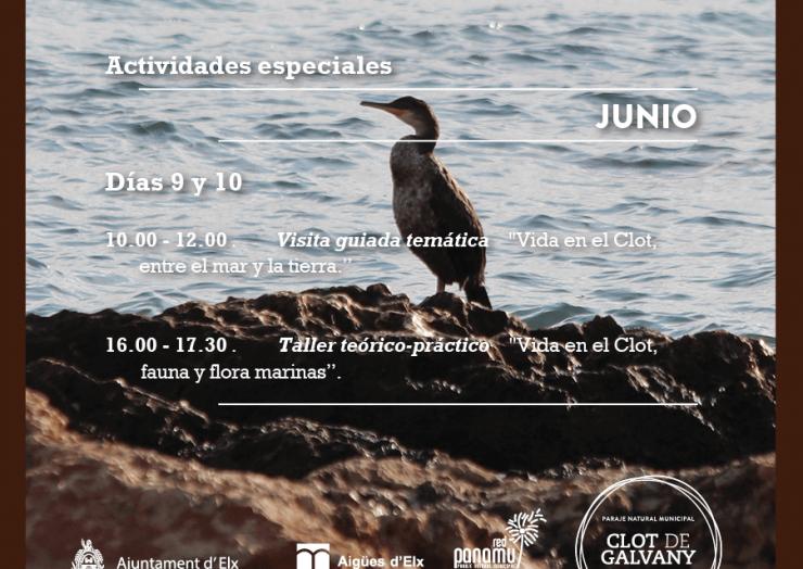 Día Mundial de los Océanos en el Clot de Galvany