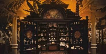 'El museo de las maravillas'