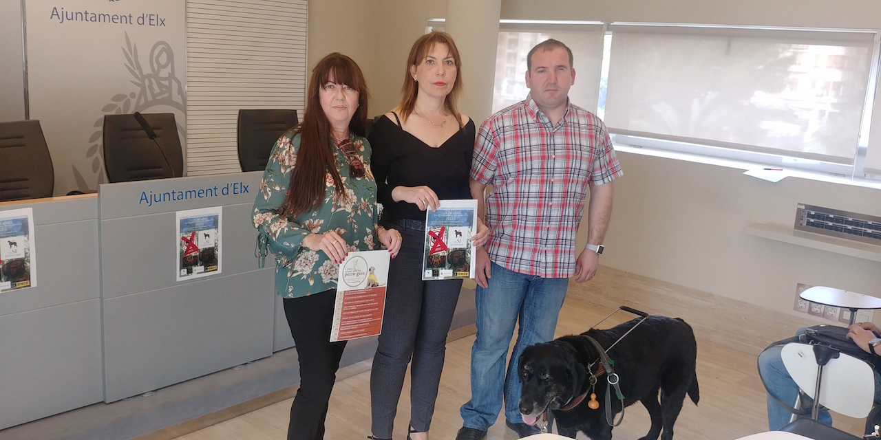 Elx serà seu de la Comunitat Valenciana en el Dia Internacional del Gos Guia aquest cap de setmana