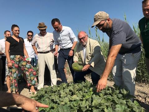 Los regantes de Carrizales prevén recoger este año más de 400.000 kilos de melón