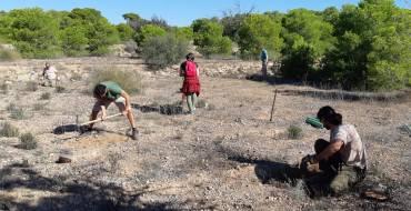 El Ayuntamiento y Conselleria colaboran en la introducción de especies de flora catalogada en el Clot de Galvany