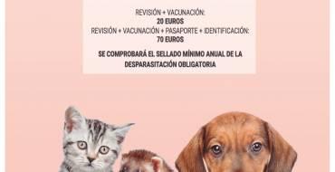 Arranca la Campaña de Vacunación Antirrábica 2019 para perros, gatos y hurones