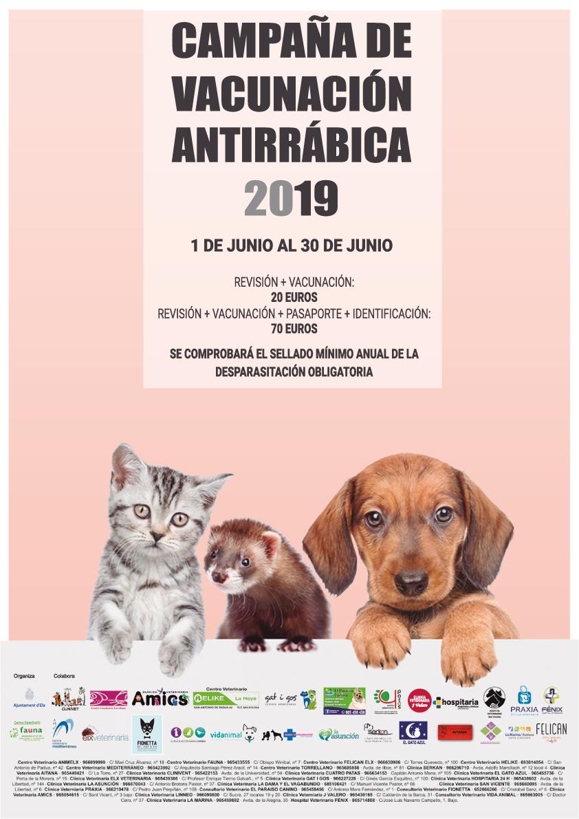 Vacunas Gatos Calendario.Arranca La Campana De Vacunacion Antirrabica 2019 Para