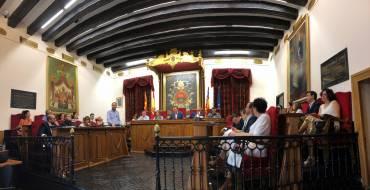 El ple aprova l'organització del nou Ajuntament d'Elx