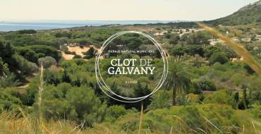 El Clot de Galvany inicia una campaña de recuperación de la cubierta vegetal