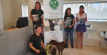 La protectora Baix Vinalopó y el Ayuntamiento de Elche crean un calendario solidario destinado al cuidado y manutención de los animales