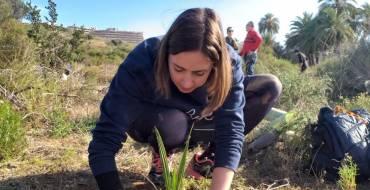 La concejala de Medio Ambiente colabora en la reforestación del Clot  junto a una treintena de personas