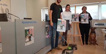 Bienestar Animal emprende una campaña a favor de la adopción y contra el abandono de mascotas
