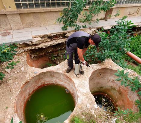 Sanidad ordena a la empresa CTL fumigar la zona de las excavaciones en el entorno del mercado central para evitar la proliferación de  mosquitos a causa de las recientes lluvias