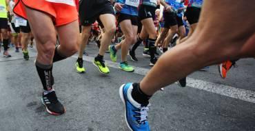 L'organització de la Mitja Marató Internacional Ciutat d'Elx cancel·la l'edició d'enguany
