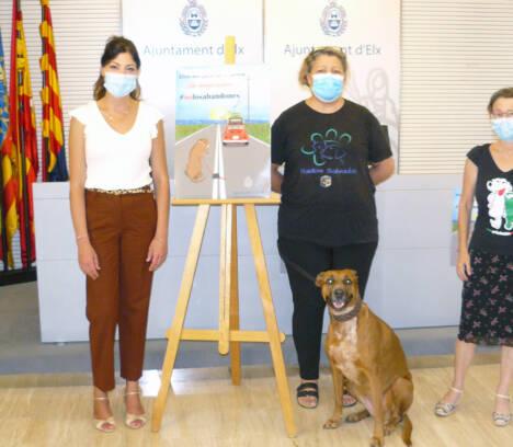 Bienestar Animal presenta la campaña estival de concienciación y sensibilización contra el abandono de animales