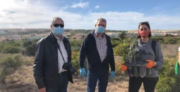 La Concejalía de Medio Ambiente impulsa nuevas jornadas de revegetación del Clot de Galvany los domingos de noviembre