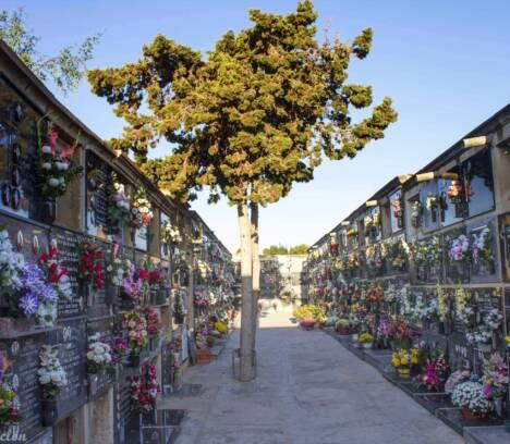 """El dispositivo especial de """"Todos los Santos"""" se cierra sin incidencias y con la menor afluencia a los cementerios de los últimos años"""