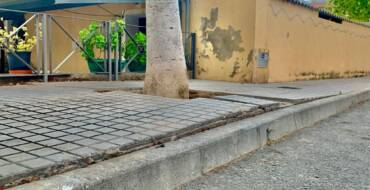 El Ayuntamiento sustituye el arbolado de la calle Libertad de Torrellano en base a criterios técnicos para garantizar la seguridad en la vía pública