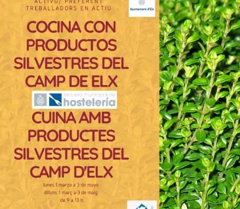 curso cocina con productos silvestres del camp de Elx