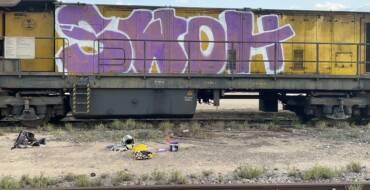 La Policía Local identifica a dos hombres como autores de los grafitis realizados en dos vagones de un tren en Elche