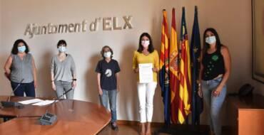 Elx presenta un pla pioner de control i gestió de colònies felines de manera ètica