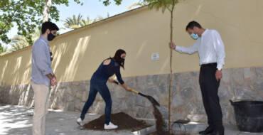 """El Ayuntamiento se suma a la iniciativa """"Un árbol por Europa"""" para reafirmar su compromiso por la lucha contra el cambio climático"""