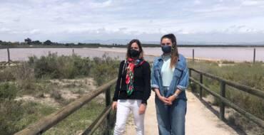 La Conselleria de Medio Ambiente protege espacios naturales en el sur de la provincia para rescatar especies amenazadas como la gaviota picofina