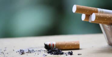 El Día Mundial Sin Tabaco recuerda los efectos perniciosos del fumar sobre la salud y la naturaleza