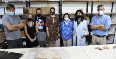 El MAHE i l'Institut Valencià de Conservació col·laboren en l'anàlisi d'una peça de l'època ibera trobada al Camp d'Elx