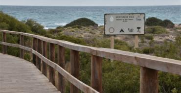 Ajuntament i Costes milloren els accessos a les platges d'Elx amb dos noves passarel·les i una sendera per a protegir les dunes