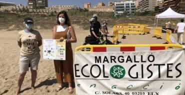La Concejalía de Medio Ambiente, Margalló y Aigües d'Elx lanzan una campaña para proteger los nidos de tortugas marinas en las playas del Mediterráneo