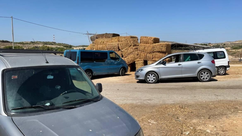 La Policia Local d'Elx impedeix la venda il·legal d'una desena de corders vius en una explotació ramadera