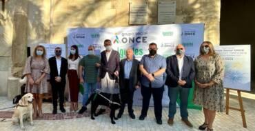 La Plaça de Baix acoge una exhibición de perros guía para sensibilizar a la población sobre los obstáculos que se encuentran las personas invidentes