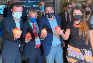 """El alcalde destaca """"el papel fundamental que representa Elche en Alicante Gastronómica por su gran tradición culinaria e innovadora"""""""